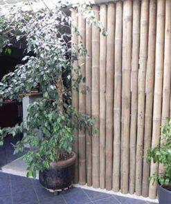 cloison interieur en bambou