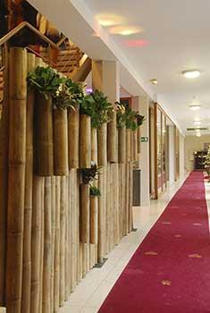 cloison vegetale exterieur bambou